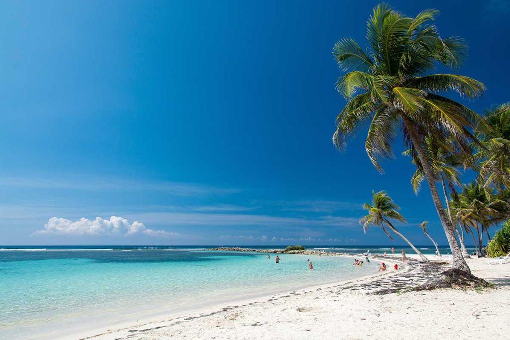 les plages de Guadeloupe pour Noel